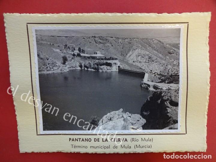 PANTANO DE LA CIERVA (RÍO MULA) MULA (MURCIA). 1953. FOTO CON CARACTERÍSTICAS AL DORSO (Fotografía Antigua - Albúmina)