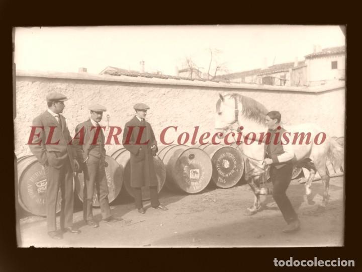 UTIEL, VALENCIA, ALCOHOL VINO - CLICHE ORIGINAL - NEGATIVO EN CRISTAL - AÑOS 1910-1920 (Fotografía Antigua - Albúmina)