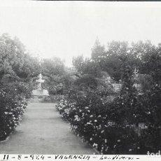 Fotografía antigua: VALENCIA 1924 LOS VIVEROS. Lote 186060325