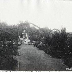 Fotografía antigua: VALENCIA 1924 LOS VIVEROS. Lote 186060377