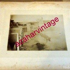 Fotografía antigua: SIGLO XIX, ESPECTACULAR ALBUMINA, APARTADO DE CORRIDA DE TOROS, CON CARTON 290X225MM. Lote 190895595