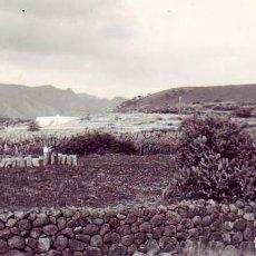 Fotografía antigua: TENERIFE - EL SOCORRO TEGUESTE 1967. Lote 194365346