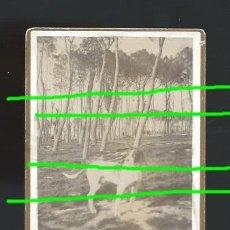 Fotografía antigua: FOTOGRAFÍA DE AUTOR. UN PERRO EN UN PINAR. AÑO 1892. FOTÓGRAFO ADOLFO.. Lote 194678393