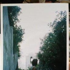 Fotografía antigua: FOTOGRAFIA RAVELLO SALERNO ITALIA. Lote 194718413