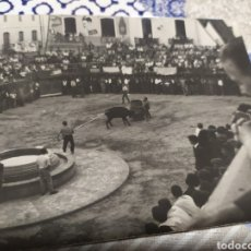 Fotografía antigua: LOTE DOS ANTIGUAS FOTOS VAQUILLAS EN EL PUEBLO PUBLICIDAD CERVEZA EL AGUILA AL FONDO. Lote 195249661