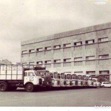 Fotografía antigua: TENERIFE - LA LAGUNA - ANTIGUA FABRICA DE TABACOS ALVARO 22 FOTOS. Lote 195253682