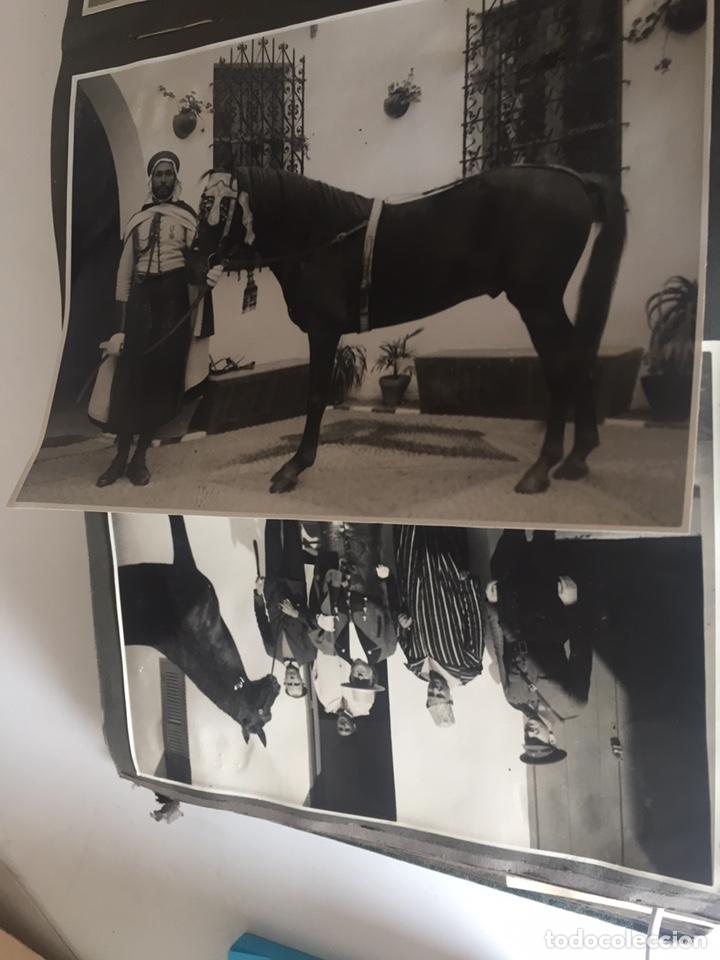 Fotografía antigua: Álbum fotografías militar rey Marruecos - Foto 115 - 221511113