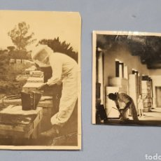 Fotografía antigua: FOTOGRAFÍAS DE APICULTORES , AÑOS 1950. Lote 238109855