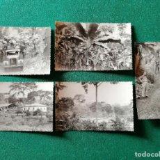 Fotografía antigua: LOTE FOTOS GUINEA ESPAÑOLA. VISITA A LAS PLANTACIONES. Lote 245955335