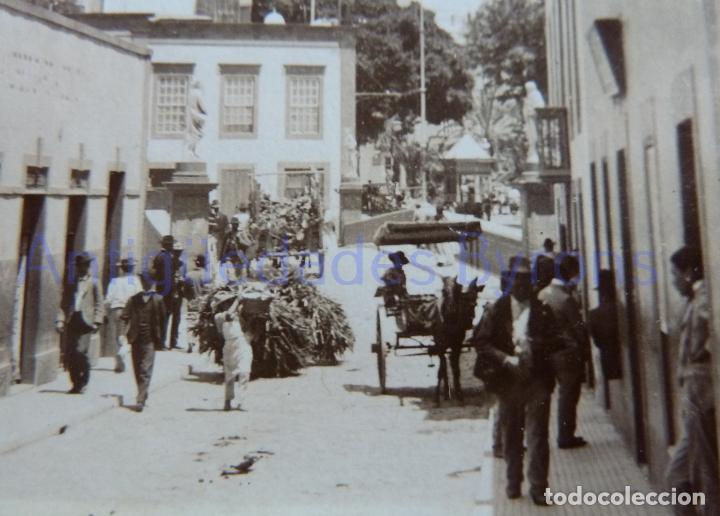 Fotografía antigua: FOTOGRAFÍA ANTIGUA. LAS PALMAS DE G.C. CALLE OBISPO CODINA. SIGLO XIX (8 X 8 CM) - Foto 2 - 257606450