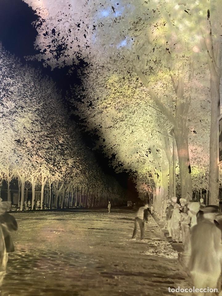 Fotografía antigua: Placa Cristal Negativo paisaje parque - Foto 2 - 276922018