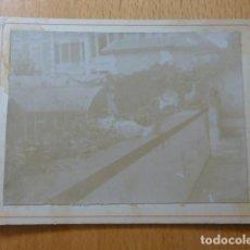 Fotografía antigua: GATO EN JARDIN ALBUMINA MONTADA SOBRE CARTON SIGLO XIX 9,5 X 12,5 CMTS. Lote 277653573