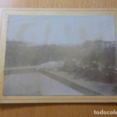 Fotografía antigua: GATO EN JARDIN ALBUMINA MONTADA SOBRE CARTON SIGLO XIX 9,5 X 12,5 CMTS. Lote 277653598