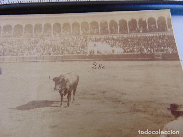 Fotografía antigua: FOTO ALBUMINA PLAZA TOROS LA MAESTRANZA DE SEVILLA FINALES DE SIGLO XIX, PICADOR - Foto 2 - 279876548