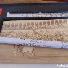 Fotografía antigua: FOTO ALBUMINA PLAZA TOROS LA MAESTRANZA DE SEVILLA FINALES DE SIGLO XIX, PAR DE BANDERILLAS. Lote 279926448