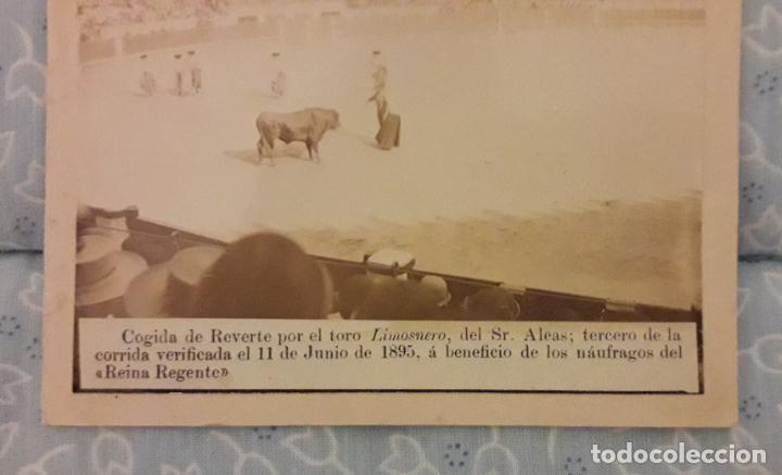 Fotografía antigua: Dos fotos toros finales XIX - Foto 4 - 293308958
