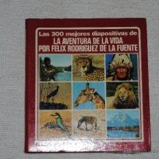 Fotografía antigua: ALBUM DIAPOSITIVAS FELIX RODRIGUEZ DE LA FUENTE LA AVENTURA DE LA VIDA. Lote 42335127