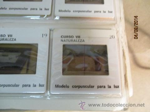 Fotografía antigua: Educacion General Basica - curso septimo naturaleza - 14 tomos - 20 diapositivas por tomo - HIARES - Foto 3 - 51157399