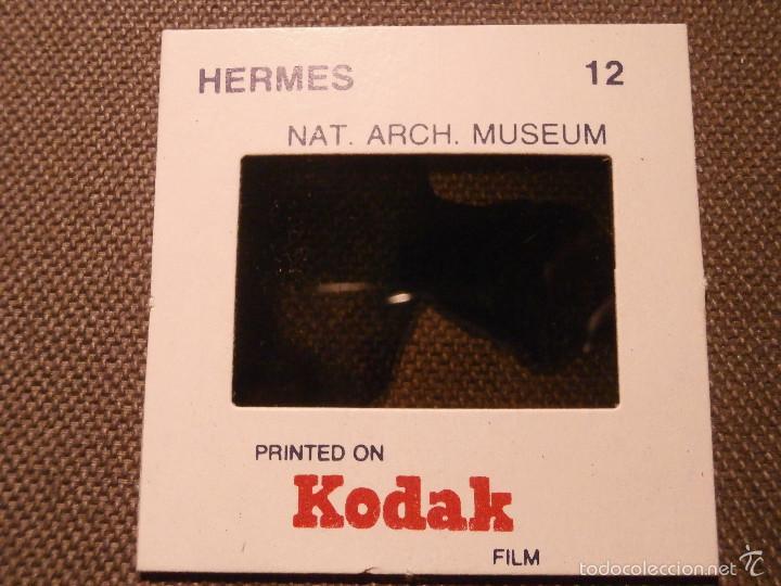 Fotografía antigua: Diapositiva Kodak - Hermes - Museo de Arte Naural - - Foto 2 - 58482282