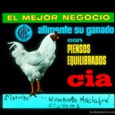Fotografía antigua: CINE - PUBLICIDAD - RIUDOMS - DIAPOSITIVA DE CRISTAL. Lote 59693307