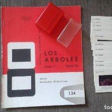 Fotografía antigua: 12 DIAPOSITIVAS Y LIBRETO - TEMÁTICA LOS ÁRBOLES - CON ILUSTRACIONES DE ÉPOCA - 1967 . Lote 66282810