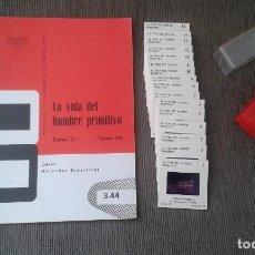 Fotografía antigua: 16 DIAPOSITIVAS Y LIBRETO - LA VIDA DEL HOMBRE PRIMITIVO - ILUSTRACIONES DE ÉPOCA, 1967 - VER FOTOS . Lote 66486374