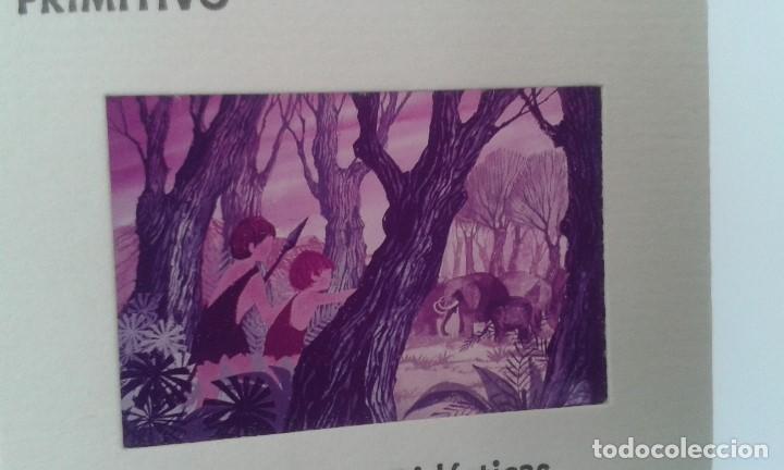 Fotografía antigua: 16 diapositivas y libreto - LA VIDA DEL HOMBRE PRIMITIVO - ilustraciones de época, 1967 - Ver fotos - Foto 4 - 66486374