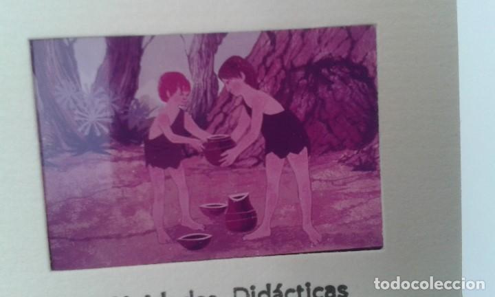 Fotografía antigua: 16 diapositivas y libreto - LA VIDA DEL HOMBRE PRIMITIVO - ilustraciones de época, 1967 - Ver fotos - Foto 7 - 66486374