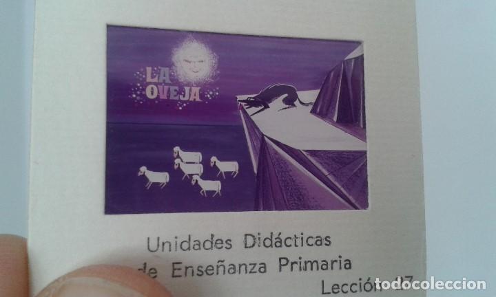 Fotografía antigua: LA OVEJA - 16 diapositivas y libreto - Con ilustraciones de época - 1967 - Ver fotos - Foto 2 - 66491234