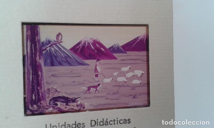 Fotografía antigua: LA OVEJA - 16 diapositivas y libreto - Con ilustraciones de época - 1967 - Ver fotos - Foto 3 - 66491234