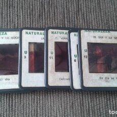 Fotografía antigua: 11 DIAPOSITIVAS -- NATURALEZA -- ESPAÑA AÑOS 60 -- VER FOTOS --. Lote 67357441