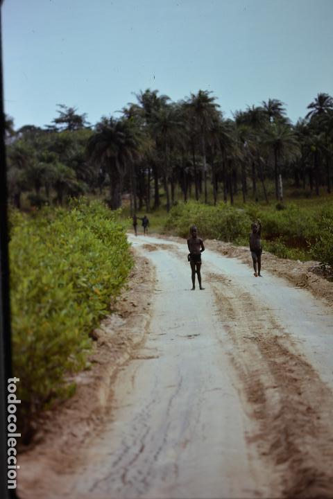 COLECCION 1 DE 100 SENSACIONALES DIAPOSITIVAS DE KENYA-MASAI-MARA-ICENIA REALIZADAS EN 1981 (Fotografía Antigua - Diapositivas)