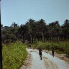 Fotografía antigua: COLECCION 1 DE 100 SENSACIONALES DIAPOSITIVAS DE KENYA-MASAI-MARA-ICENIA REALIZADAS EN 1981. Lote 70146693