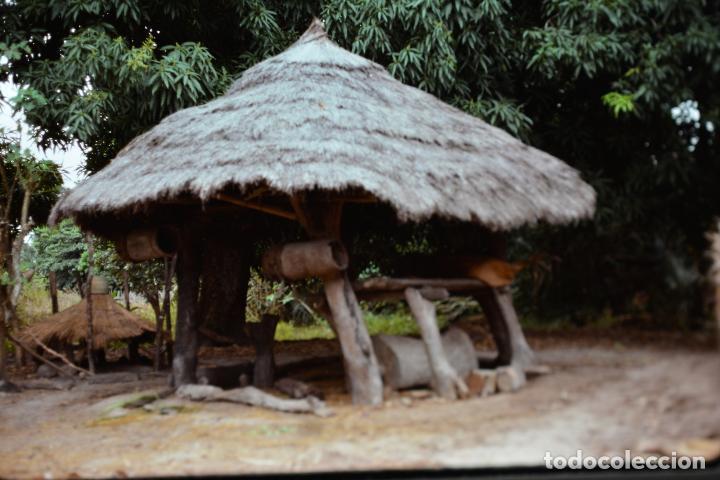 Fotografía antigua: COLECCION 1 DE 100 SENSACIONALES DIAPOSITIVAS DE KENYA-MASAI-MARA-ICENIA REALIZADAS EN 1981 - Foto 2 - 70146693