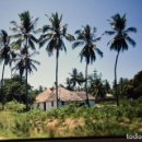 Fotografía antigua: COLECCION N 4 DE 60 DIAPOSITIVAS DE MOMBASA-PARK NARURAL-SENEGAL-DIANI,EAAL-DIANI, EN 1981. Lote 70149365