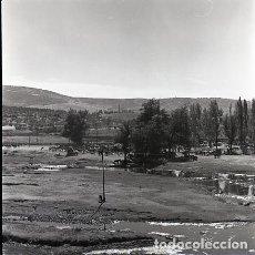 Fotografía antigua: NEGATIVO ESPAÑA CÁCERES PLASENCIA FERIA GANADO 1970 KODAK 55MM GRAN FORMATO NEGATIVE SPAIN PHOTO. Lote 76081063