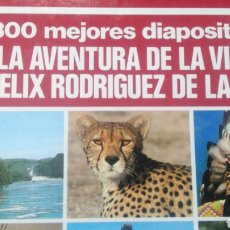 Fotografía antigua: LAS 300 MEJORES DIAPOSITIVAS DE LA AVENTURA DE LA VIDA POR FÉLIX RODRÍGUEZ DE LA FUENTE. COMPLETO.. Lote 121382618