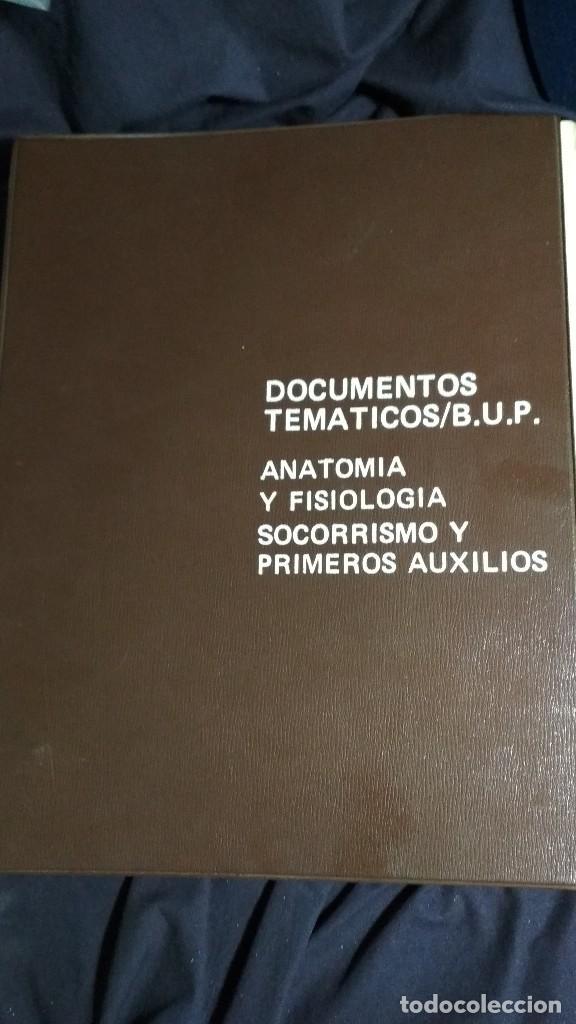 DOCUMENTOS TEMATICOS BUP ANATOMIA, FISIOLOGIA SOCORRISMO Y PRIMEROS AUXILIOS COMPLETO VER FOTOS (Fotografía Antigua - Diapositivas)
