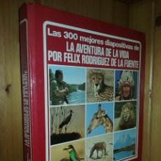 Fotografía antigua: LAS 300 MEJORES DIAPOSITIVAS DE LA AVENTURA DE LA VIDA POR FELIX RODRIGUEZ DE LA FUENTE, URBION. Lote 135565646