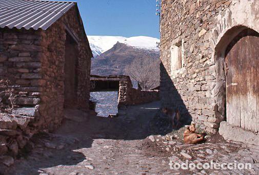 Fotografía antigua: 11 diapositivas 24x36 mm de Llessui y Bernui (Pallars Sobirà, Sort, Vall d'Assua, Lleida, Lérida) - Foto 2 - 144863210