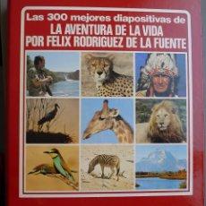 Fotografía antigua: FELIX RODRIGUEZ DE LA FUENTE - LAS 300 MEJORES DIAPOSITIVAS DE LA AVENTURA DE LA VIDA 1980.. Lote 174323165