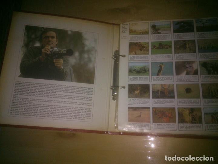 Fotografía antigua: las 300 mejores diapositivas de la aventura de la vida por felix rodriguez de la fuente. incompleta. - Foto 2 - 187623640