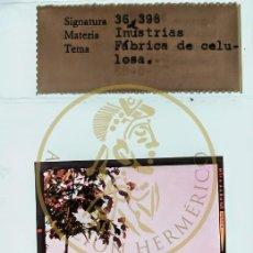 Fotografía antigua: 1963 - PONTEVEDRA - FABRICA CELULOSA GALICIA DIAPOSITIVA ORIGINAL PROFESIONAL S.O.F. - FORM.6X6. Lote 239490795