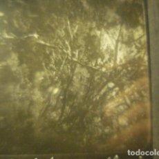 Fotografía antigua: PAISAJE EN CINTRA ? PORTUGAL CRISTAL PARA LINTERNA MAGICA - FINALES SIGLO XIX - H. CABRERIZO. Lote 288124358