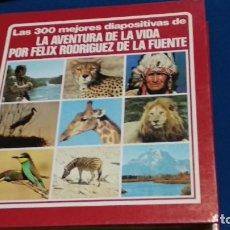 Fotografía antigua: LA AVENTURA DE LA VIDA DE FÉLIX RODRÍGUEZ DE LA FUENTE 1980. LAS 300 MEJORES DIAPOSITIVAS CON 319. Lote 270396388