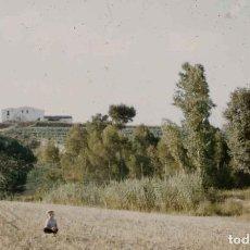 Fotografía antigua: SITGES. CAN CARTRÓ. CAMPINYA. RIERA. VERANO DE 1956. Lote 277181368