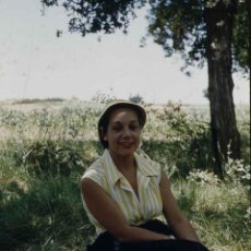 Fotografía antigua: CAN CARTRÓ. SITGES. SEÑORA EN LA SOMBRA DE UN ÁRBOL. VERANO 1956. Lote 277181703