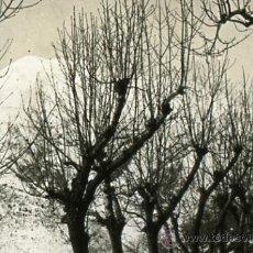 Fotografía antigua: FOTO ESTEREOSCOPICA CRISTAL 45X105 MONTSENY VOLTANS. Lote 13070034