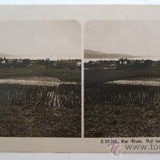 Fotografía antigua: FOTO ESTEREOSCOPICA DE ALEMANIA: S22549, DER RHEIN, AUF DER REICHENAU (EDITOR NPG). Lote 22409584