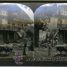Fotografía antigua: LEMONA (VIZCAYA).- UN VIEJO CASERÍO.- EDIC. KEYSTONE VIEW Nº T457.. Lote 27832744